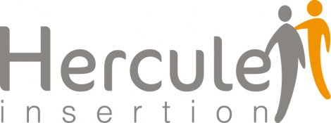 Logo Hercule Insertion