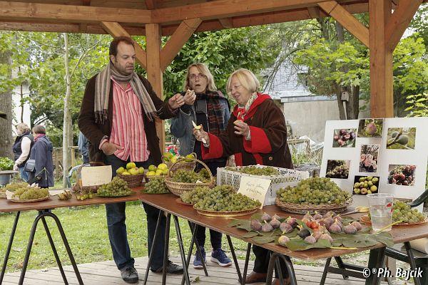 Les v nements du jardin for Mons 2015 jardin suspendu